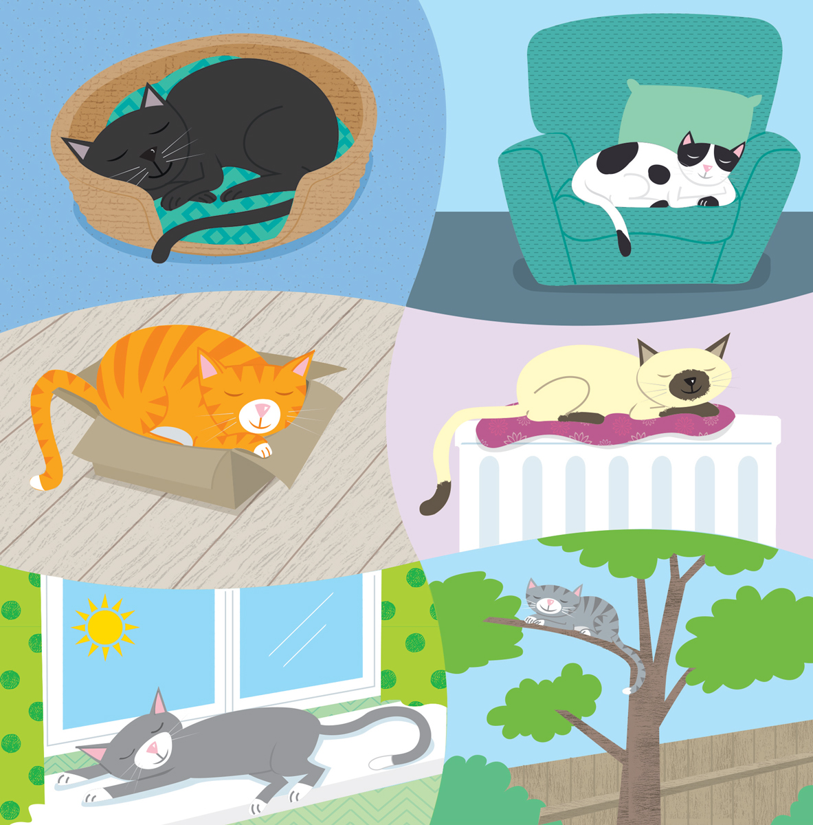 Cats, cats sleeping, vector cats, cartoon cats